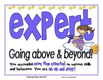 Self-Evaluation-Novice Apprentice Practitioner Expert