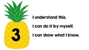 Self Monitoring Tool Pineapples