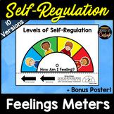 Self Regulation Behavior Management Activity - Feelings Meters