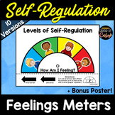 Self Regulation Feelings Meters
