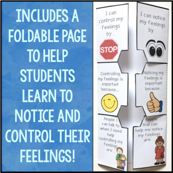 Self Regulation Foldables