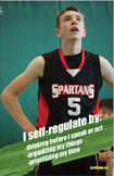 Self-Regulation Poster
