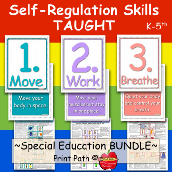 Self-Regulation Skills TAUGHT