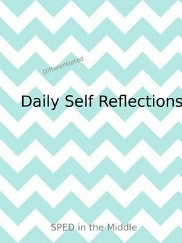 Self-Reporting Daily Reflections