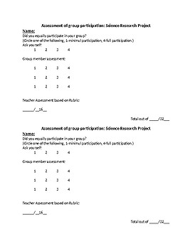 Self and Peer Assessment of Participation