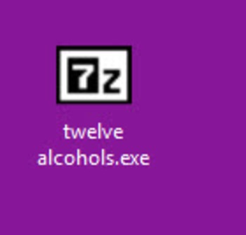 Self-extracting file:  Twelve alcohols (Enrichment Chemistry Series)