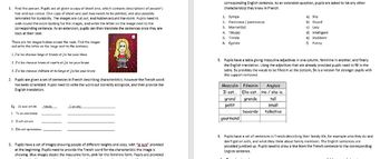 Self, family, friends and characteristics worksheets
