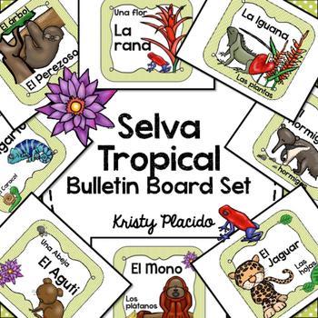 Selva Tropical / Rainforest Colorful Bulletin Board Set!