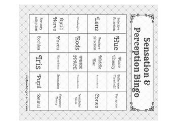 Sensation & Perception Bingo