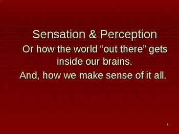 Sensation & Perception Power Point