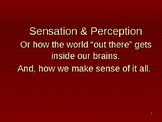 Sensation & Perception Power Point