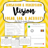 Sensation & Perception: Vision Vocabulary, Lab, & Activity
