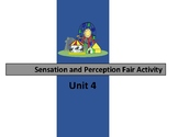 Sensation and Perception Fair Review Activity Unit 4