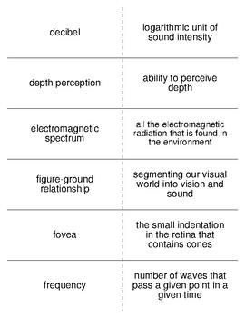 Sensation and Perception Part I Flash Cards For Psychology