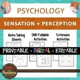 Sensation and Perception - Psychology Interactive Note-tak