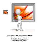 Sensation and Perception Unit Exam for AP Psychology