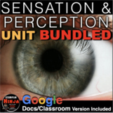 Sensation and Perception Unit: PowerPoint, Worksheets, Pla