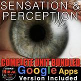 Sensation and Perception Unit: PowerPoint, Worksheets, Plans+Test (Psychology)
