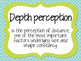 Sensation and Perception Vocabulary Posters and Flashcards