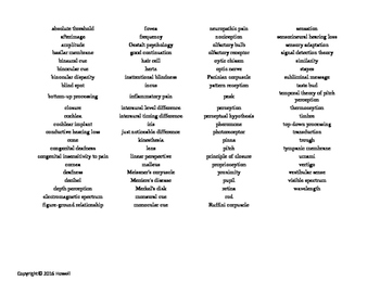 Sensation and Perception Vocabulary Word Search for Psychology