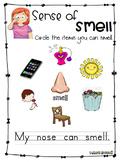 Sense Of Smell - Worksheet