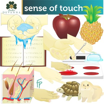 Sense Of Touch Clip Art