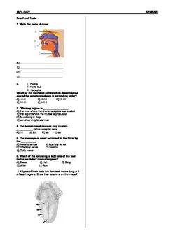 Sense Organs Worksheet