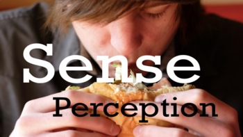 Sense Perception As Way Of Knowing -Theory of Knowledge