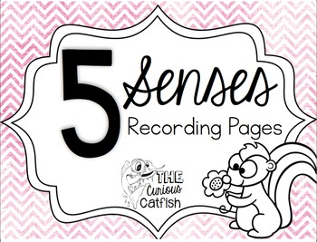Sense Recording