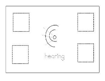 Sense of Hearing 5 Senses Color, Cut and Paste