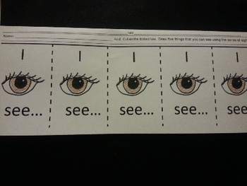 Sense of Sight Eng and Spanish Activities Science C-scope Common Core