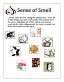 Sense of Smell Assessment