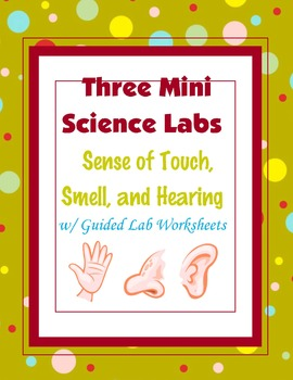 Hands-On Mini Science Labs  (Sense of Touch, Smell and Hearing) {Hands-on Lab}