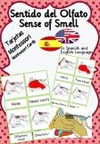 Sense of smell. Montessori Cards