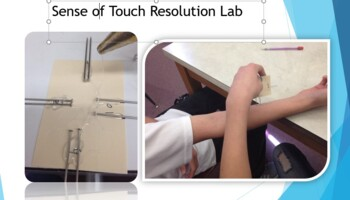 Sense of touch resolution lab set with pin tester plans.