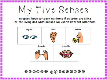 Senses Adapted Book - Special Education/Autism