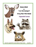 Senses Alive!  Using Your Five Senses  Expanded Lesson