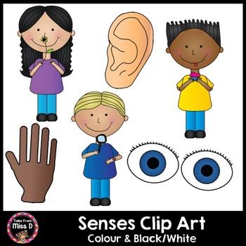 Senses Clip Art