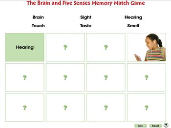 Senses, Nervous & Respiratory Systems: Memory Match Game - PC Gr. 3-8