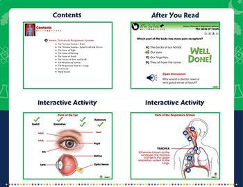 Senses, Nervous & Respiratory Systems - PC Gr. 3-8