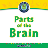 Senses,Nervous & Respiratory Systems: Parts of the Brain - MAC Gr. 3-8