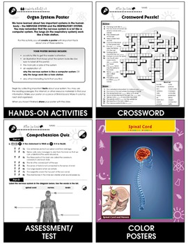 Senses, Nervous & Respiratory Systems: The Nervous System - Brain Gr. 5-8