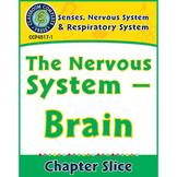 Senses, Nervous & Respiratory Systems: The Nervous System - Brain Gr. 5-8