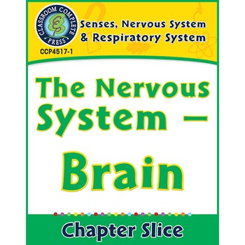 Senses, Nervous & Respiratory Systems: The Nervous System
