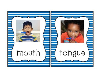 Senses Theme Vocabulary Cards