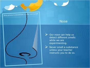 Senses Used In Science