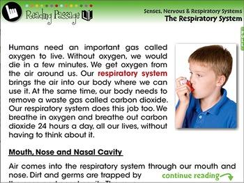 Senses,Nervous & Respiratory Systems: The Respiratory System - PC Gr. 3-8