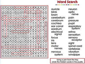 Senses,Nervous & Respiratory Systems: Word Search - PC Gr. 3-8