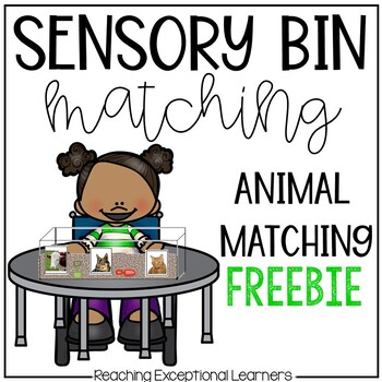 Sensory Box Activities for Special Education: Animal Matching
