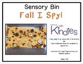 Sensory Bin - Fall I Spy! - FREEBIE